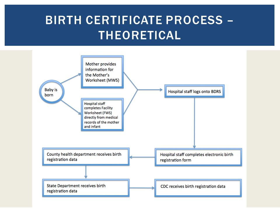 BIRTH CERTIFICATE PROCESS – THEORETICAL