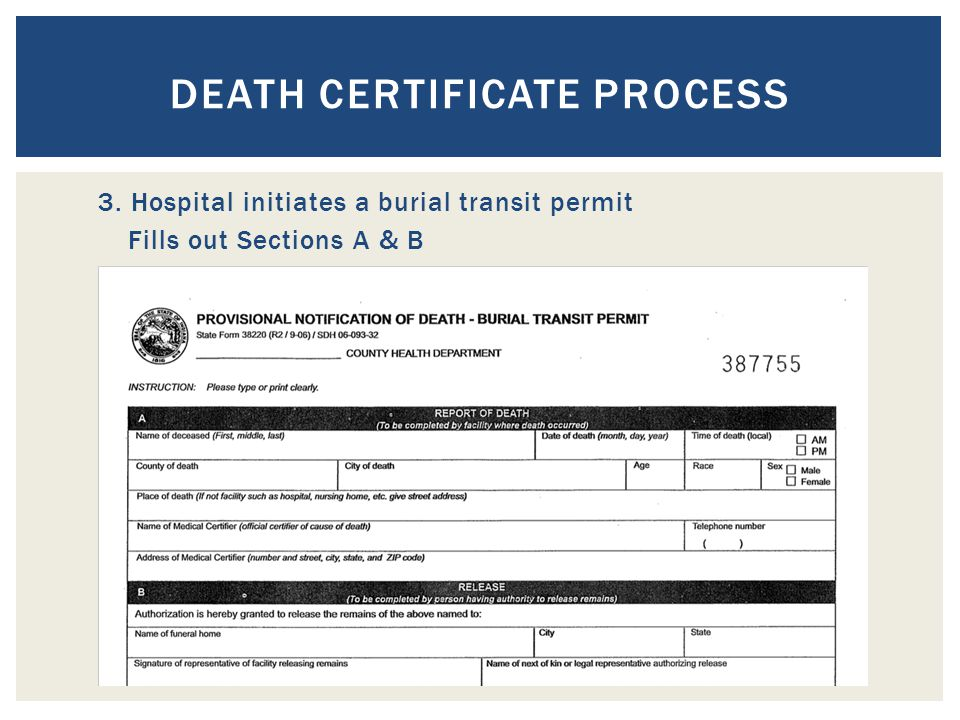 DEATH CERTIFICATE PROCESS 3. Hospital initiates a burial transit permit Fills out Sections A & B