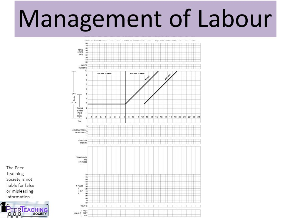 The Peer Teaching Society is not liable for false or misleading information… Management of Labour