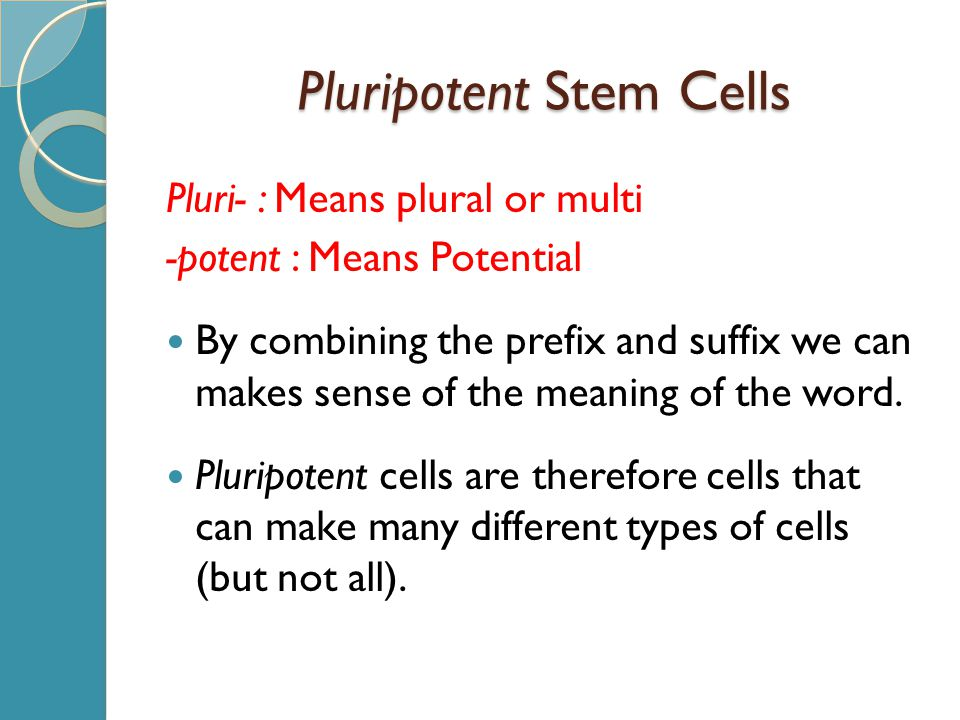 Pluripotent Stem Cells Pluri- : Means plural or multi -potent : Means Potential By combining the prefix and suffix we can makes sense of the meaning of the word.