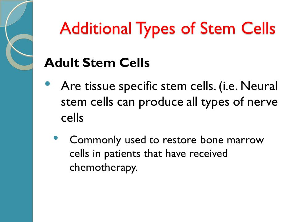 Additional Types of Stem Cells Adult Stem Cells Are tissue specific stem cells.