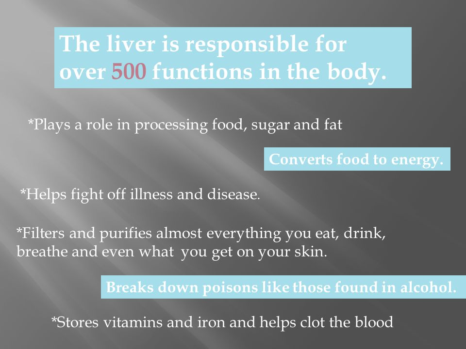 The liver is responsible for over 500 functions in the body. *Plays a role in processing food, sugar and fat *Helps fight off illness and disease. *Fi