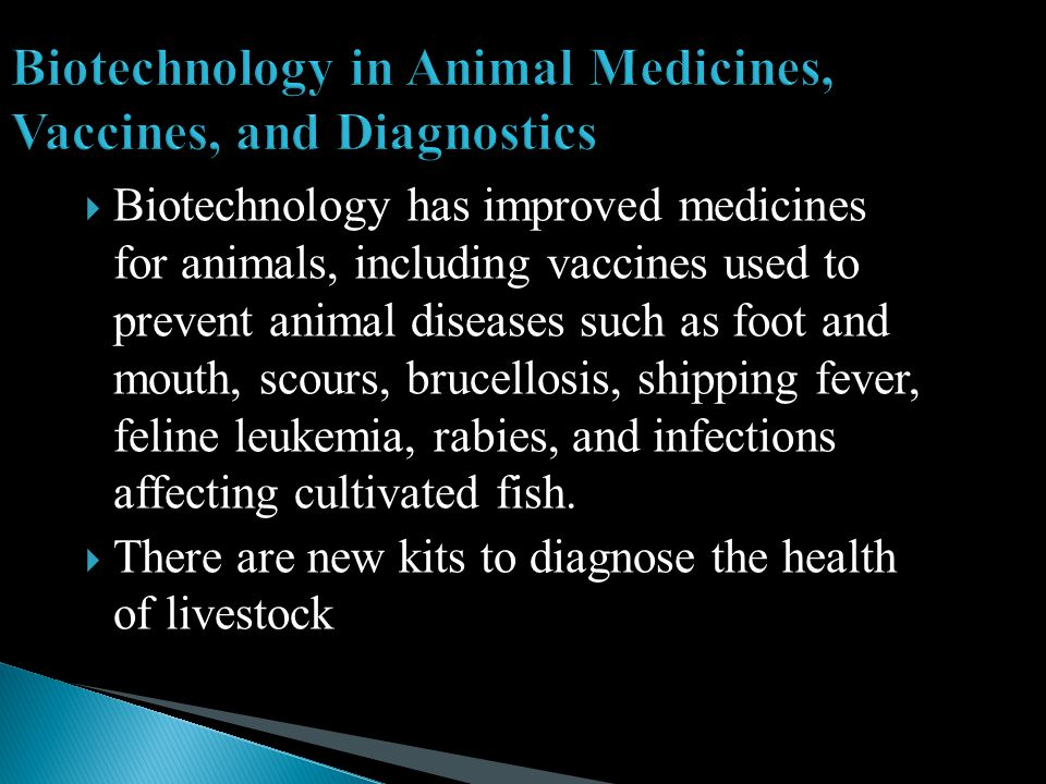  Biotechnology has improved medicines for animals, including vaccines used to prevent animal diseases such as foot and mouth, scours, brucellosis, shipping fever, feline leukemia, rabies, and infections affecting cultivated fish.