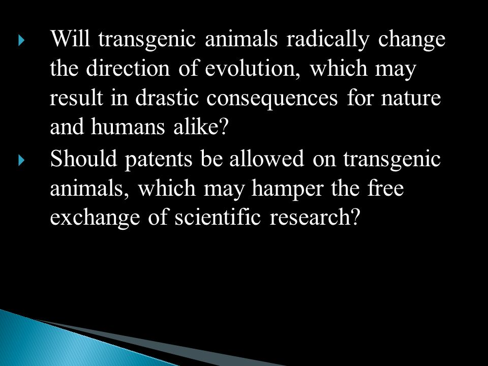  Will transgenic animals radically change the direction of evolution, which may result in drastic consequences for nature and humans alike.