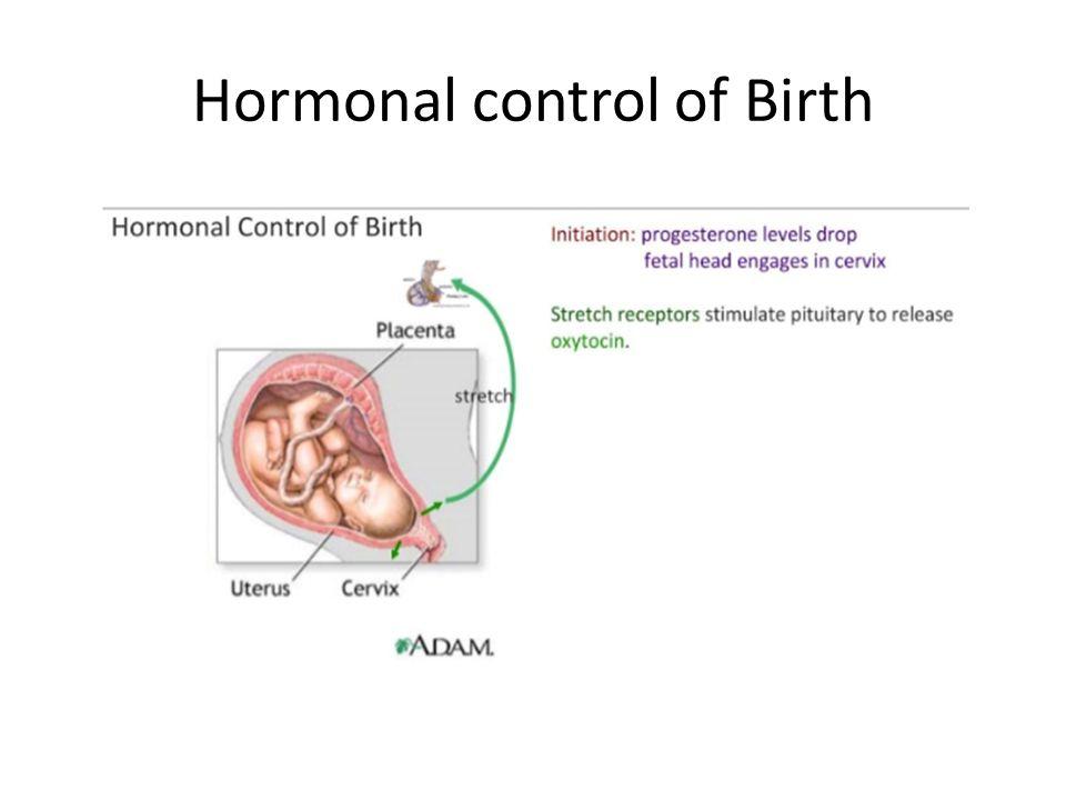 Hormonal control of Birth