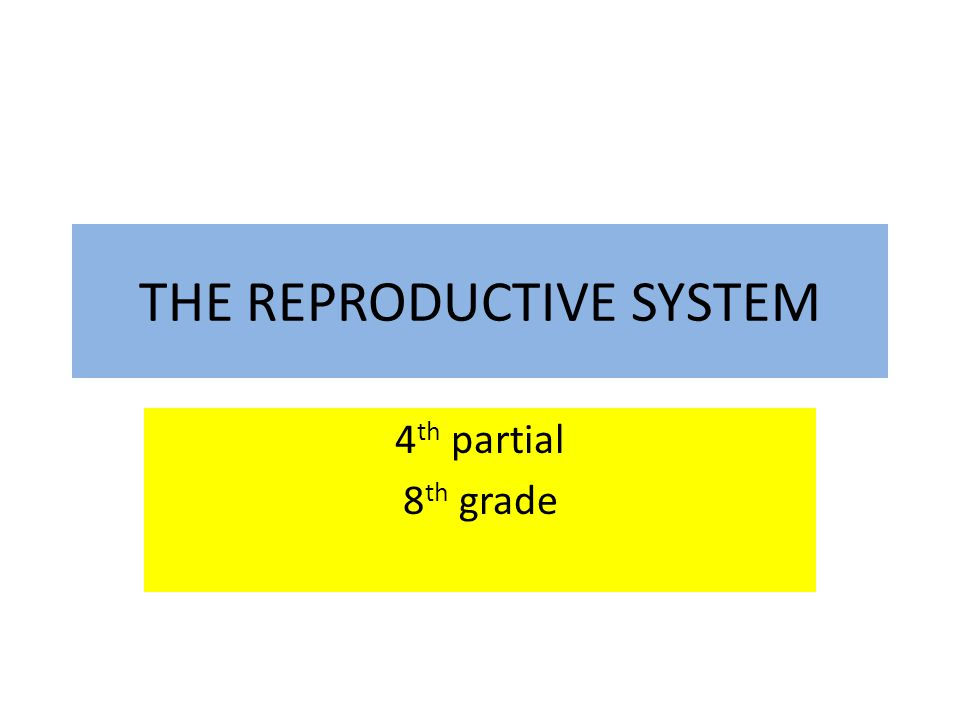 THE REPRODUCTIVE SYSTEM 4 th partial 8 th grade
