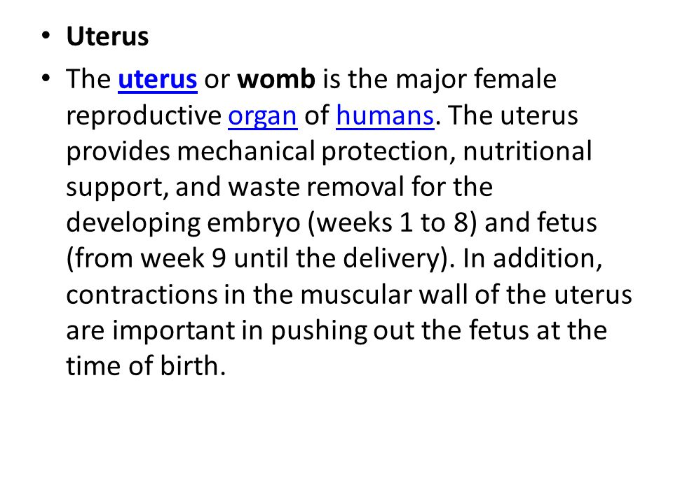Uterus The uterus or womb is the major female reproductive organ of humans. The uterus provides mechanical protection, nutritional support, and waste