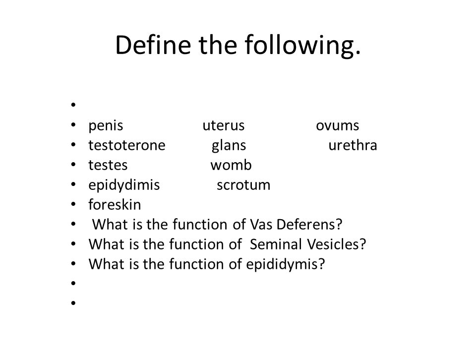 Define the following. penis uterus ovums testoterone glans urethra testes womb epidydimis scrotum foreskin What is the function of Vas Deferens? What