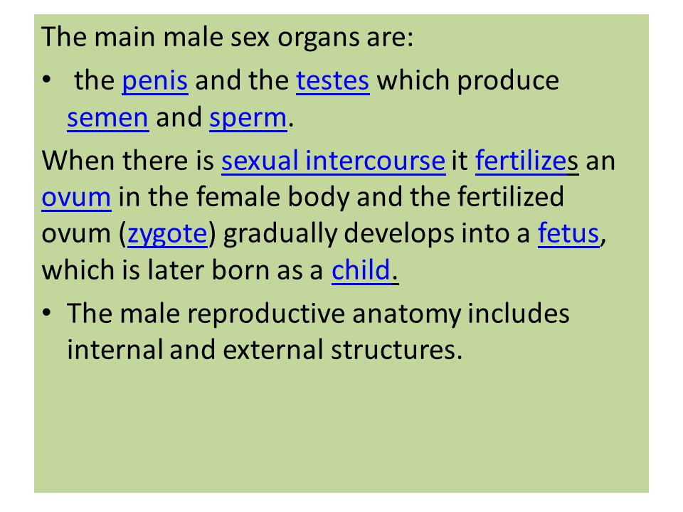The main male sex organs are: the penis and the testes which produce semen and sperm.penistestes semensperm When there is sexual intercourse it fertil
