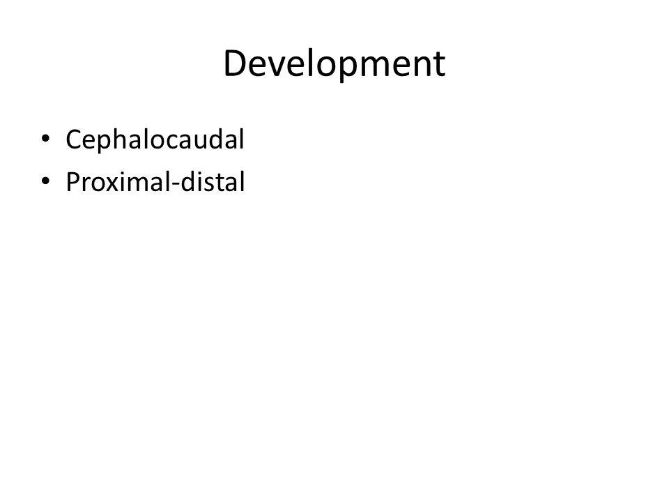 Development Cephalocaudal Proximal-distal