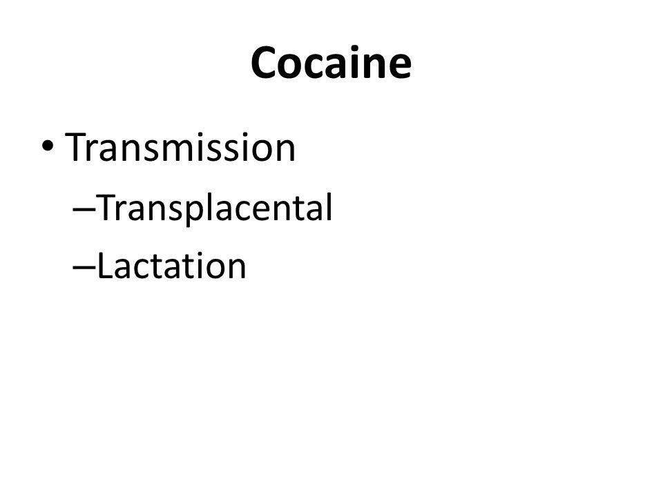 Cocaine Transmission – Transplacental – Lactation