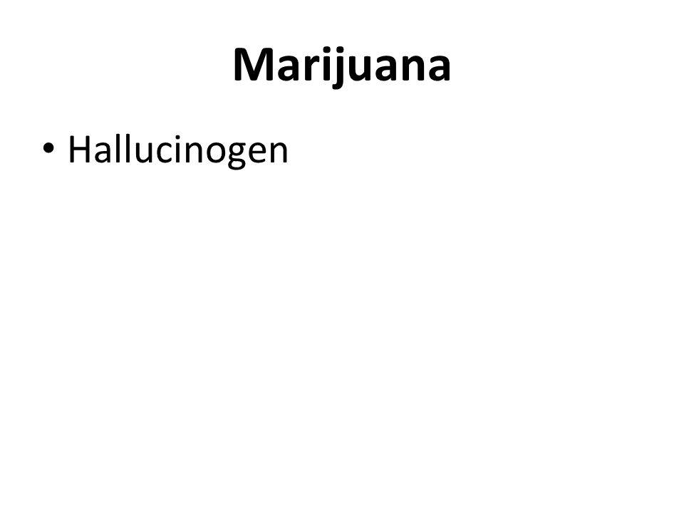 Marijuana Hallucinogen