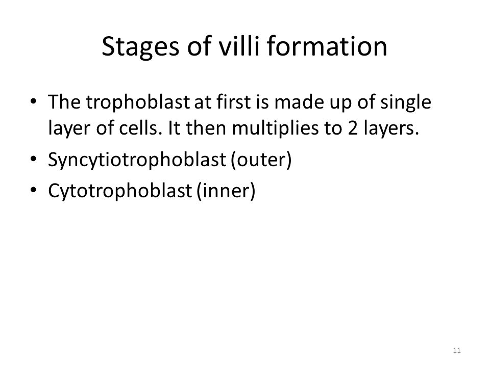 11 Stages of villi formation The trophoblast at first is made up of single layer of cells.
