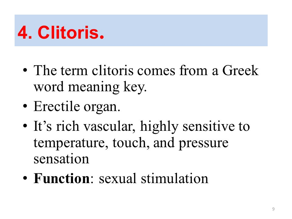 3.Fallopian tubes The two tubes extended from the uterus to the ovary.