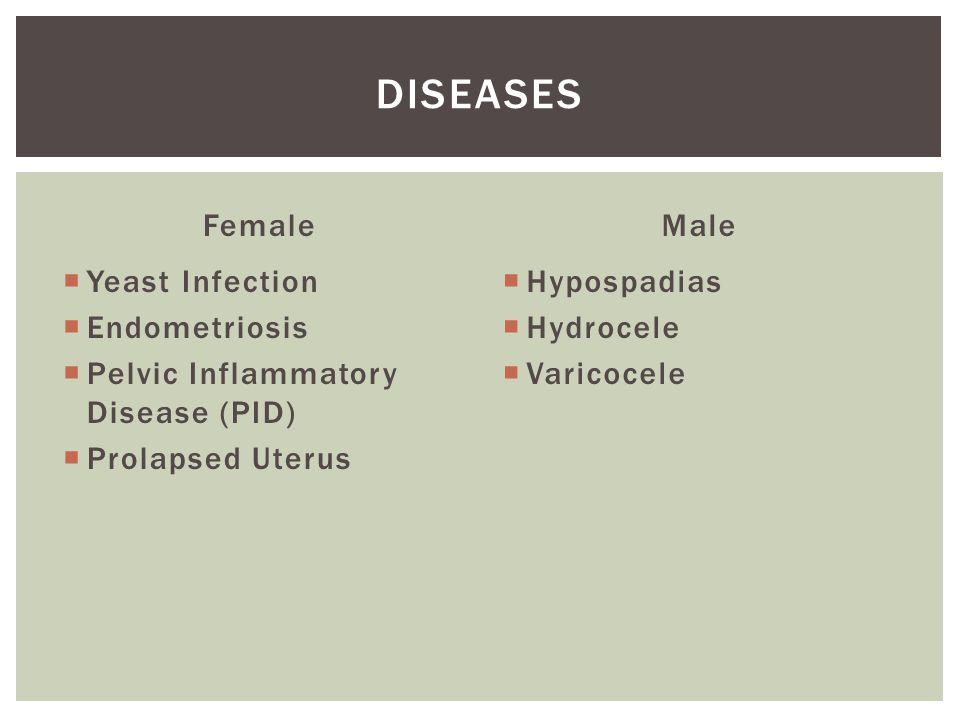 Female  Yeast Infection  Endometriosis  Pelvic Inflammatory Disease (PID)  Prolapsed Uterus Male  Hypospadias  Hydrocele  Varicocele DISEASES