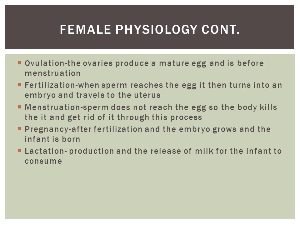  Ovulation-the ovaries produce a mature egg and is before menstruation  Fertilization-when sperm reaches the egg it then turns into an embryo and travels to the uterus  Menstruation-sperm does not reach the egg so the body kills the it and get rid of it through this process  Pregnancy-after fertilization and the embryo grows and the infant is born  Lactation- production and the release of milk for the infant to consume FEMALE PHYSIOLOGY CONT.