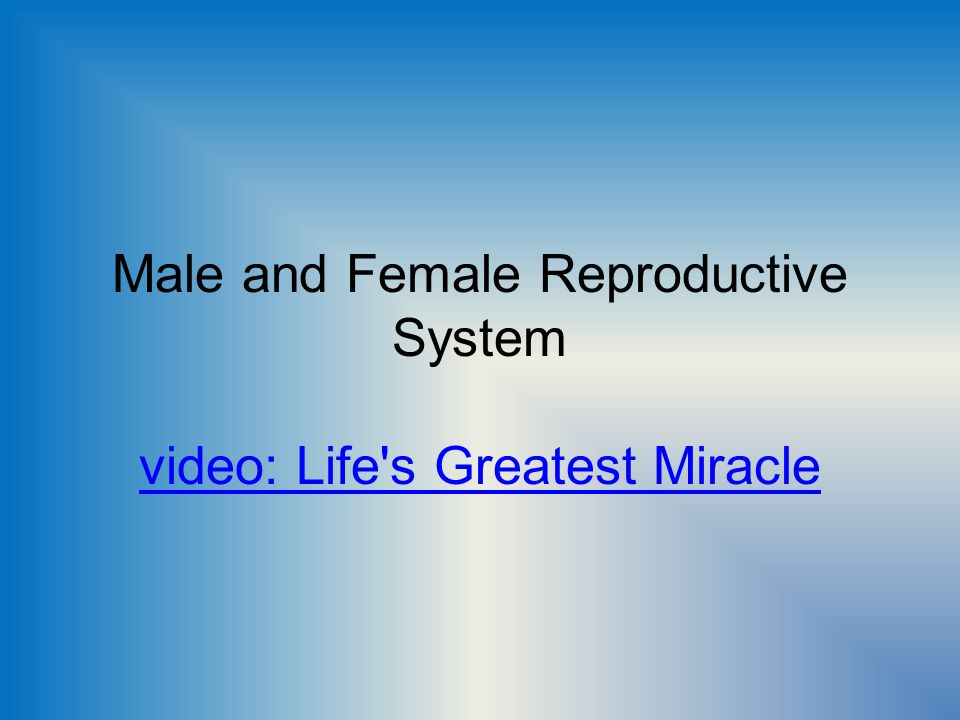 Male and Female Reproductive System video: Life's Greatest Miracle video: Life's Greatest Miracle