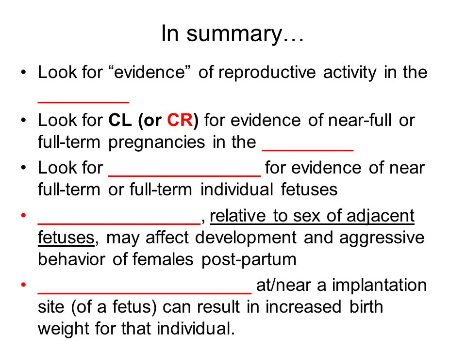 In summary… Look for evidence of reproductive activity in the _________ Look for CL (or CR) for evidence of near-full or full-term pregnancies in the _________ Look for _______________ for evidence of near full-term or full-term individual fetuses ________________, relative to sex of adjacent fetuses, may affect development and aggressive behavior of females post-partum _____________________ at/near a implantation site (of a fetus) can result in increased birth weight for that individual.