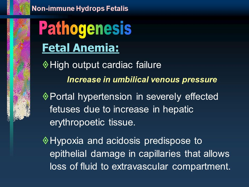 Fetal Anemia:  High output cardiac failure Increase in umbilical venous pressure  Portal hypertension in severely effected fetuses due to increase in hepatic erythropoetic tissue.