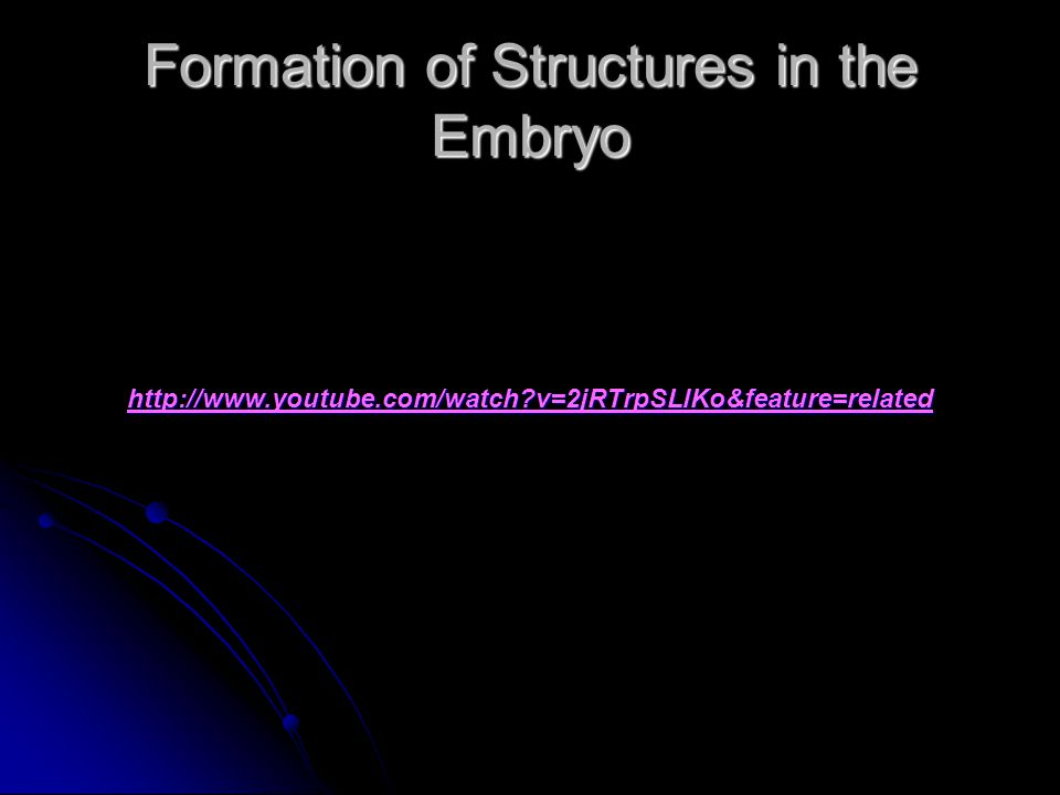 Formation of Structures in the Embryo http://www.youtube.com/watch v=2jRTrpSLlKo&feature=related