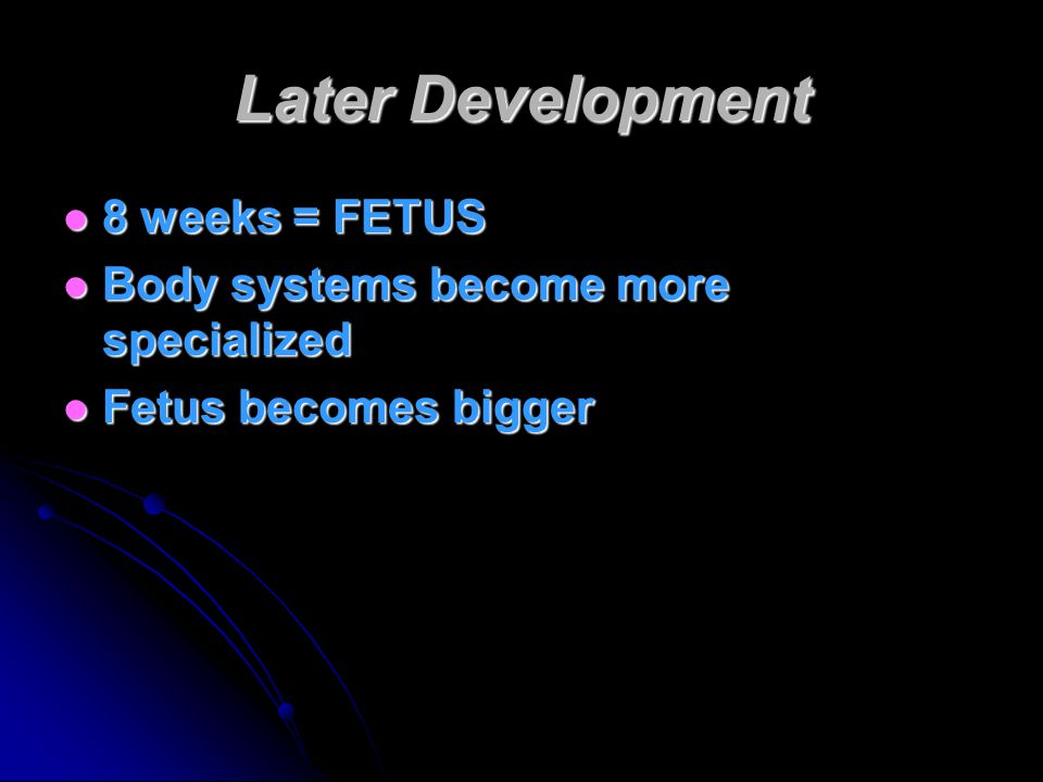 Later Development 8 weeks = FETUS 8 weeks = FETUS Body systems become more specialized Body systems become more specialized Fetus becomes bigger Fetus becomes bigger