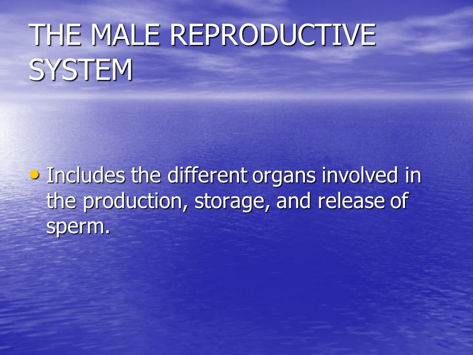 REPRODUCTIVE SYSTEM Consists of body organs that are involved in the production of offspring. Consists of body organs that are involved in the product