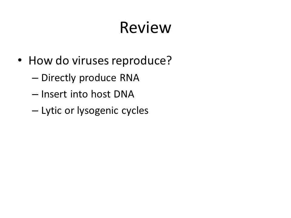 Chapter 24 Viral Replication, continued Viruses: Tools for Biotechnology – Viruses are important tools for biotechnology.