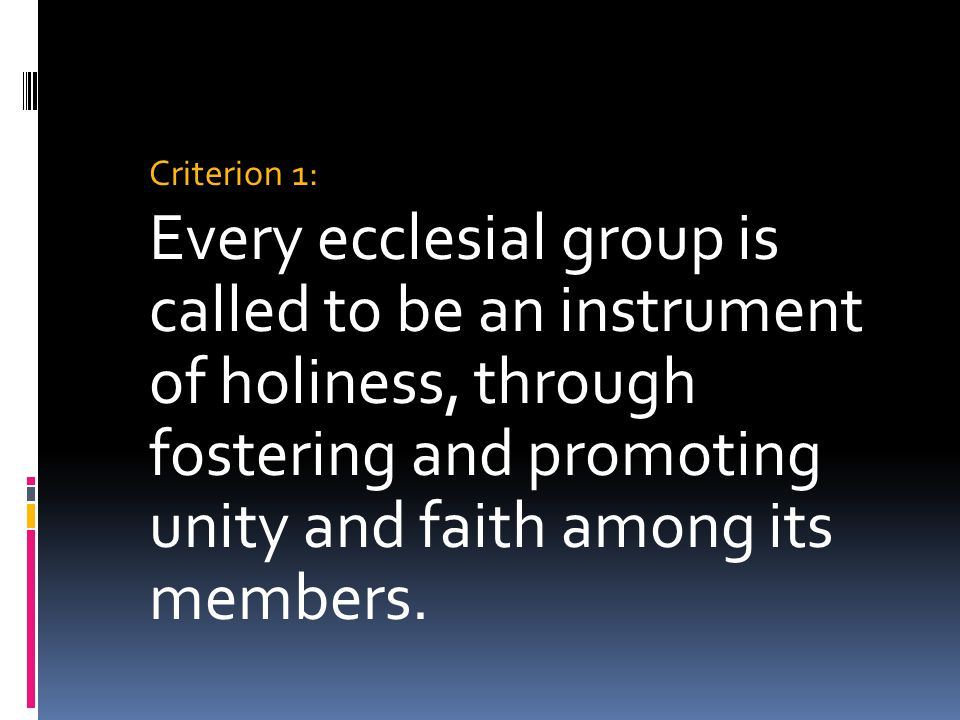Criterion 1: Every ecclesial group is called to be an instrument of holiness, through fostering and promoting unity and faith among its members.