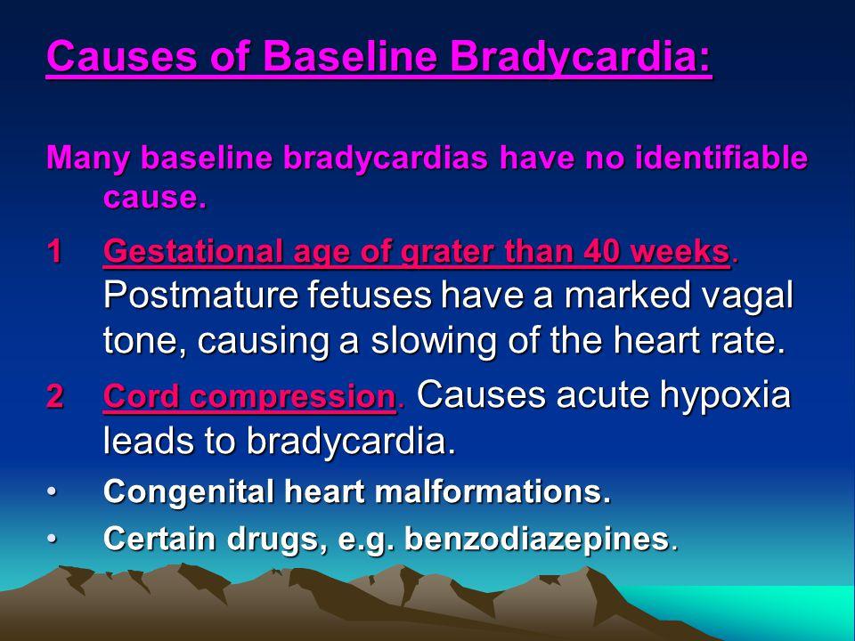 Causes of Baseline Bradycardia: Many baseline bradycardias have no identifiable cause. 1Gestational age of grater than 40 weeks. Postmature fetuses ha