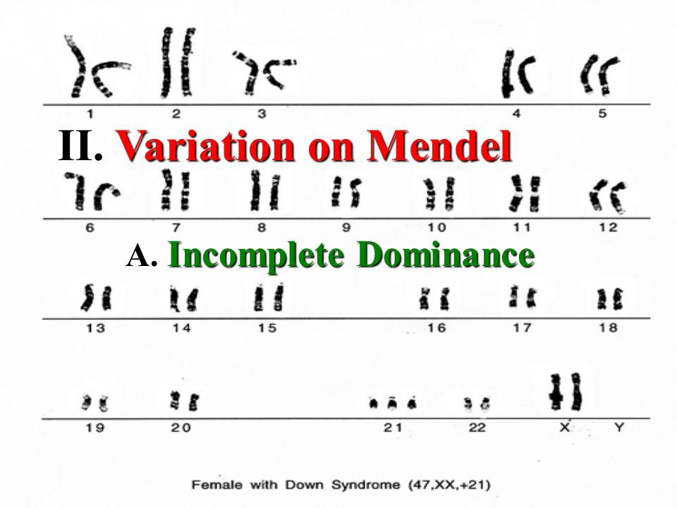 II. II. Variation on Mendel A. Incomplete Dominance