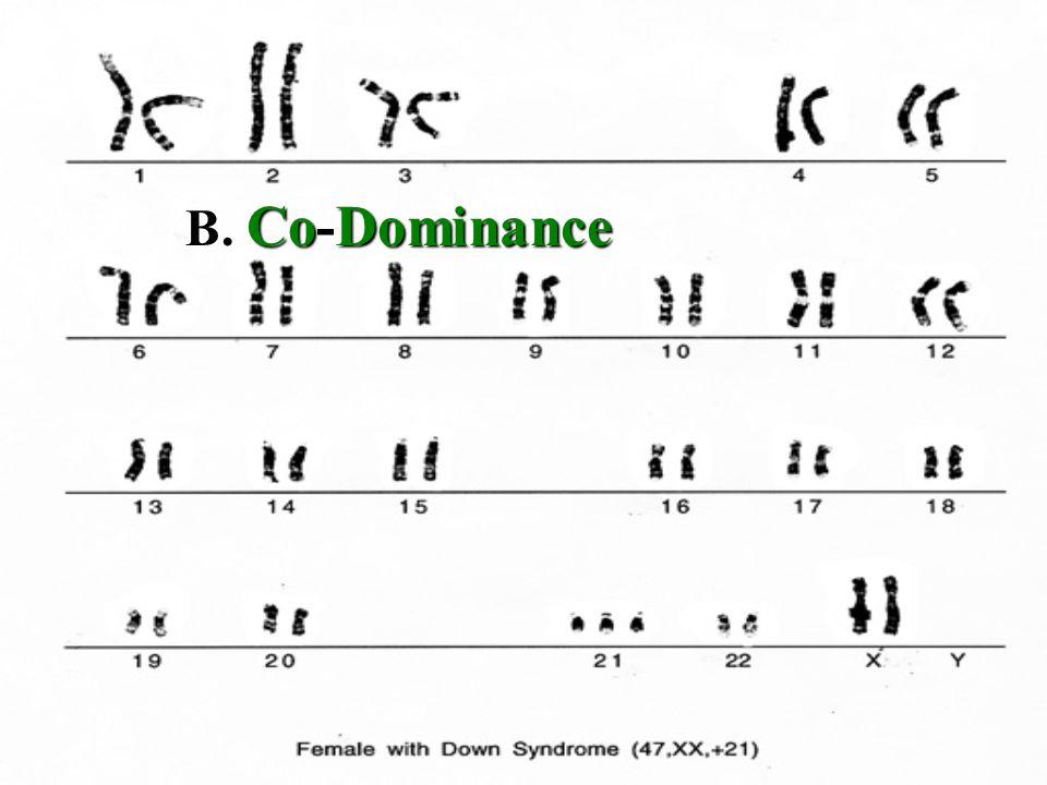 B. Co-Dominance