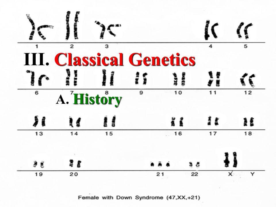 III. III. Classical Genetics A. History