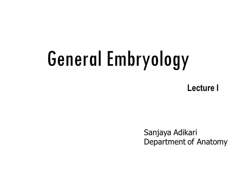 General Embryology Sanjaya Adikari Department of Anatomy Lecture II