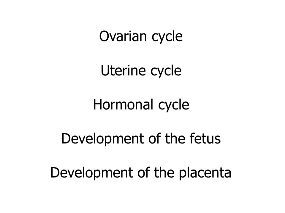 Ovarian cycle Uterine cycle Hormonal cycle Development of the fetus Development of the placenta