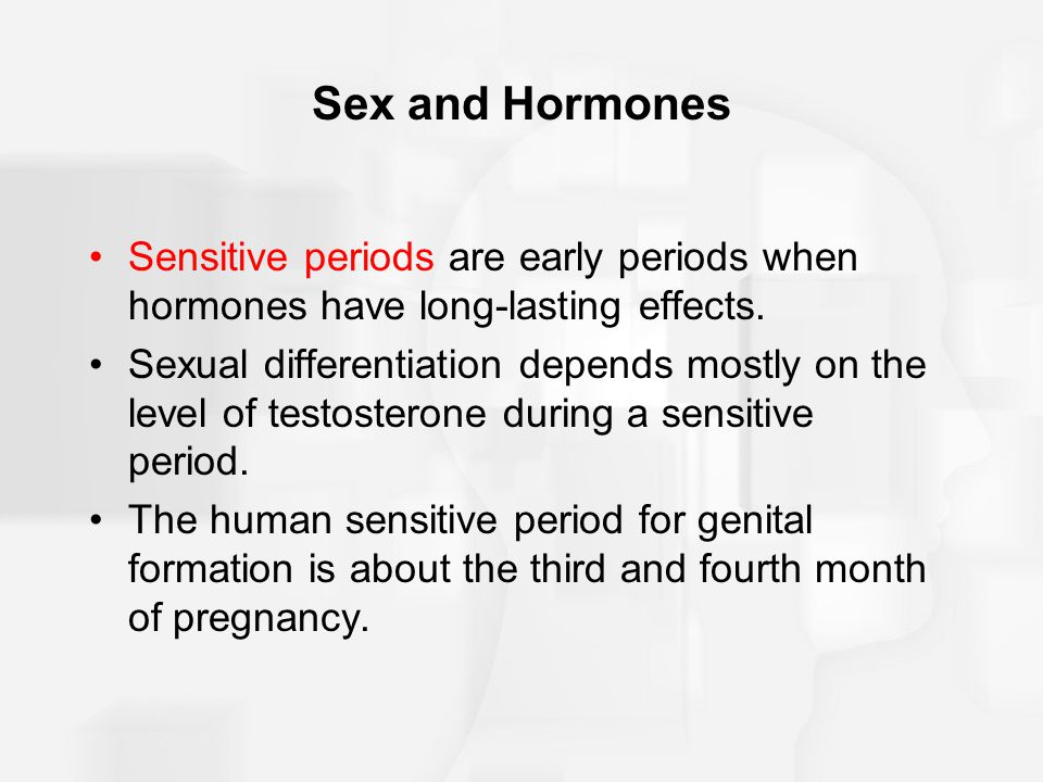 Sex and Hormones Sensitive periods are early periods when hormones have long-lasting effects. Sexual differentiation depends mostly on the level of te