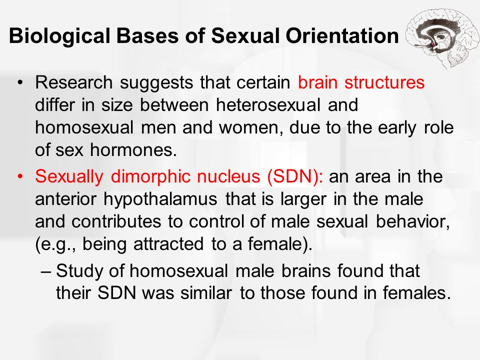 Biological Bases of Sexual Orientation Research suggests that certain brain structures differ in size between heterosexual and homosexual men and wome
