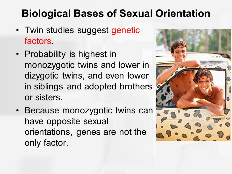 Biological Bases of Sexual Orientation Twin studies suggest genetic factors. Probability is highest in monozygotic twins and lower in dizygotic twins,