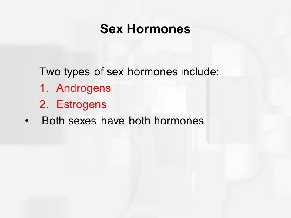 Sex Hormones Two types of sex hormones include: 1.Androgens 2.Estrogens Both sexes have both hormones