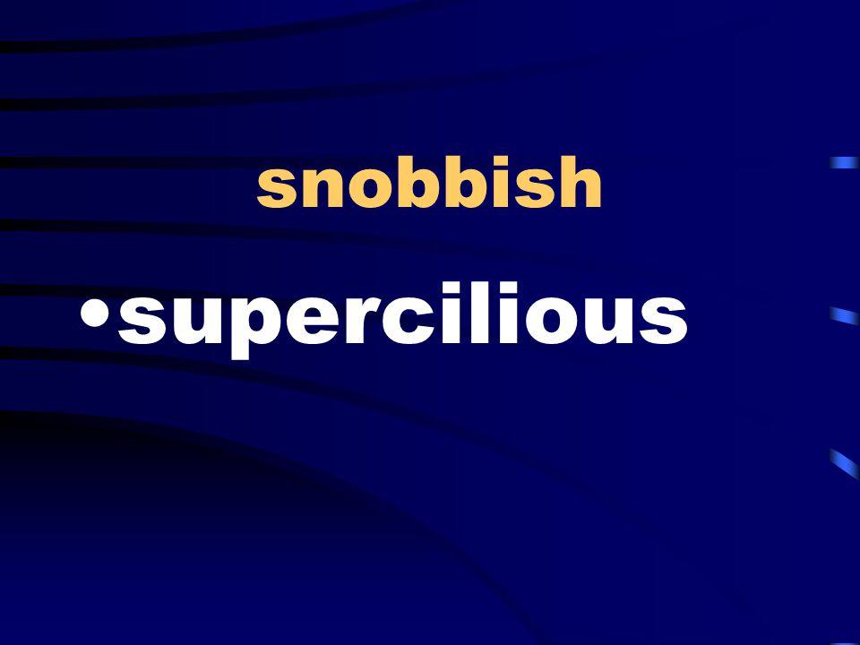 snobbish supercilious
