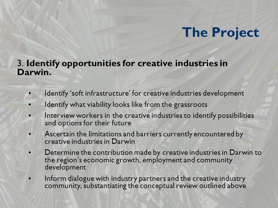 The Project 3. Identify opportunities for creative industries in Darwin.