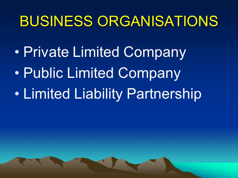 BUSINESS ORGANISATIONS Private Limited Company Public Limited Company Limited Liability Partnership