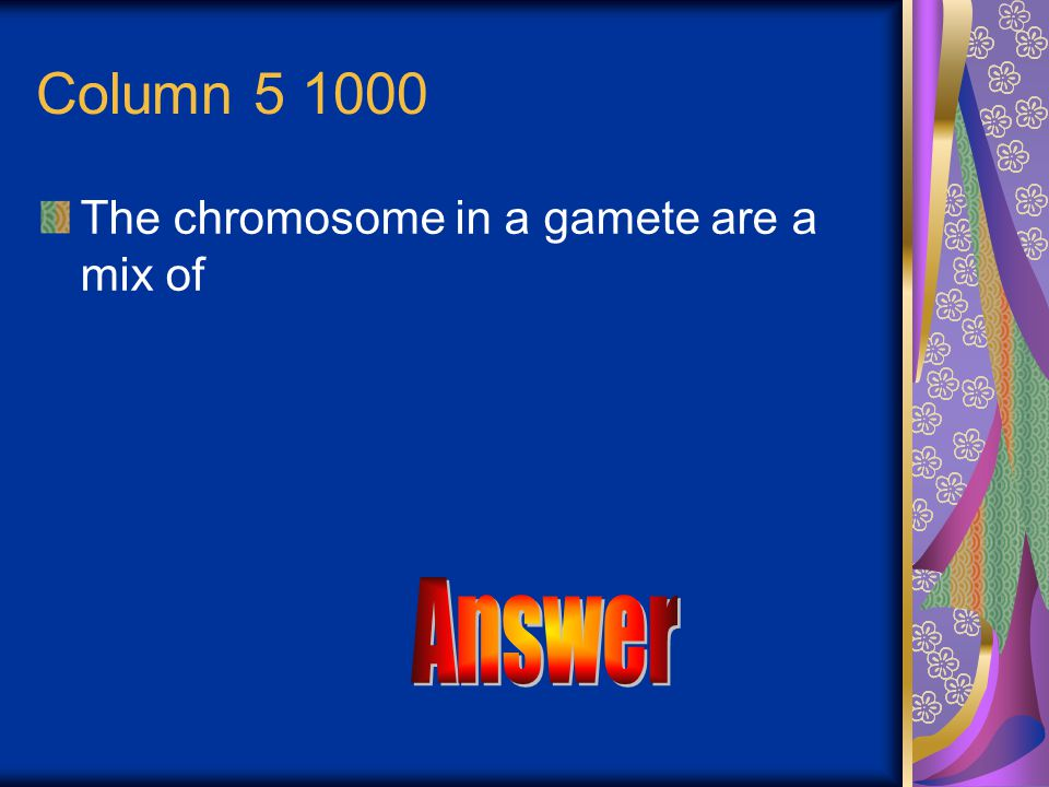 Answer Sister chromatids separate to become independent chromosomes