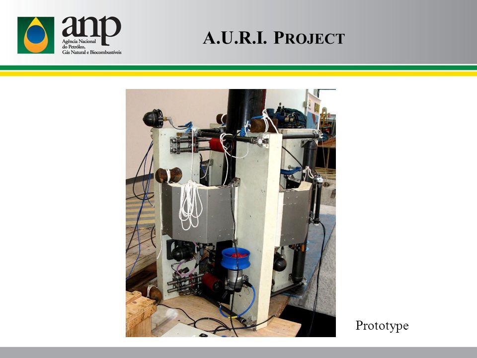 A.U.R.I. P ROJECT Prototype