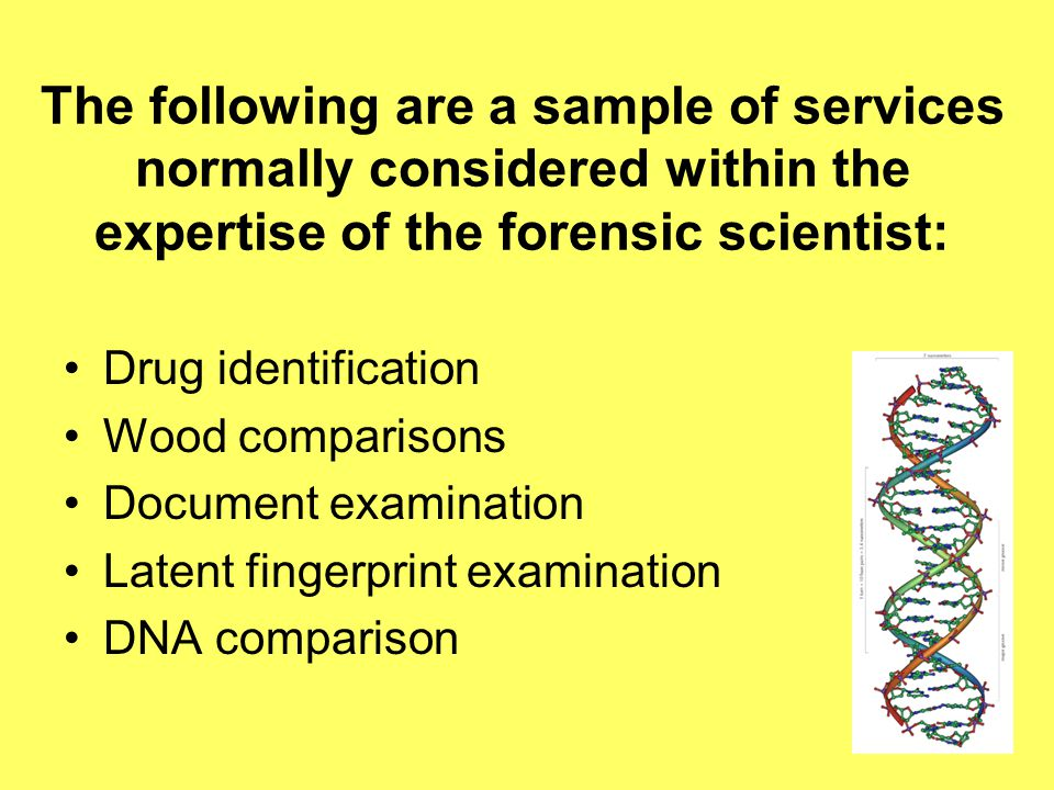 The following are a sample of services normally considered within the expertise of the forensic scientist: Drug identification Wood comparisons Document examination Latent fingerprint examination DNA comparison