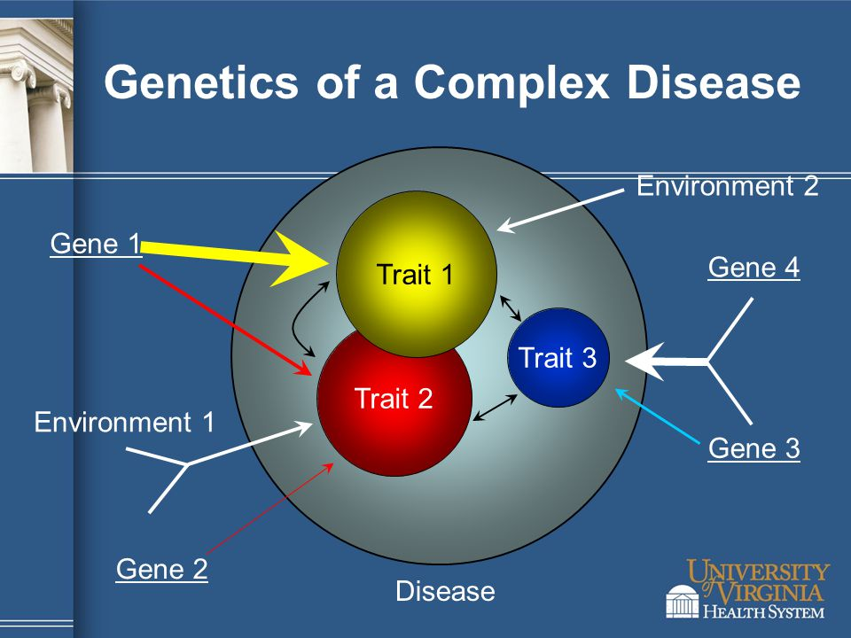 Trait 2 Trait 1 Trait 3 Disease Gene 4 Gene 1 Gene 2 Gene 3 Environment 1 Environment 2 Genetics of a Complex Disease
