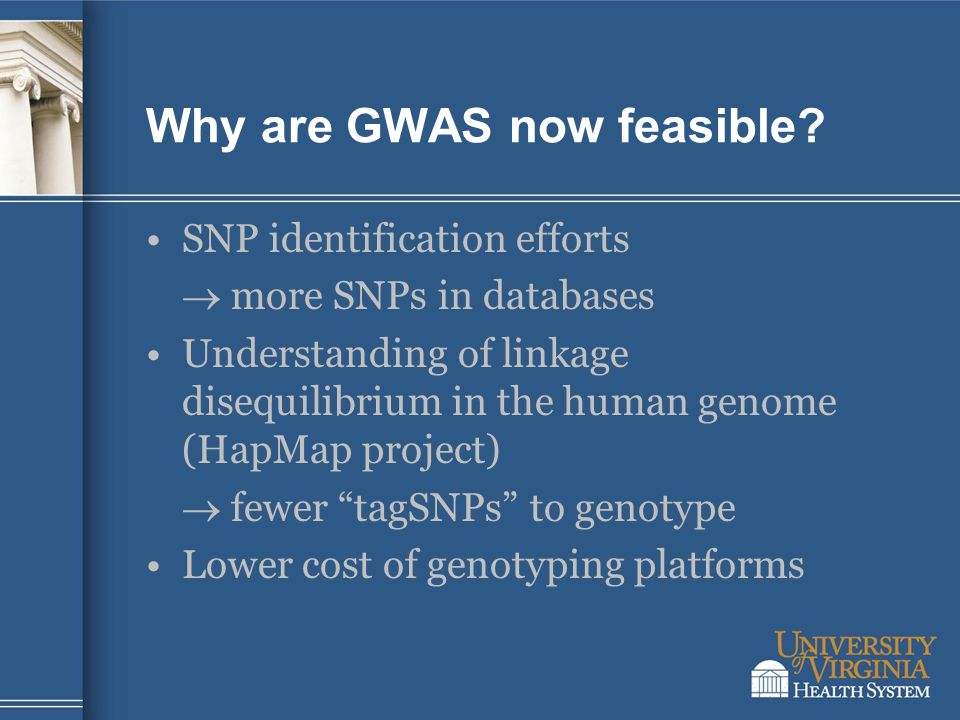 Why are GWAS now feasible? SNP identification efforts  more SNPs in databases Understanding of linkage disequilibrium in the human genome (HapMap pro