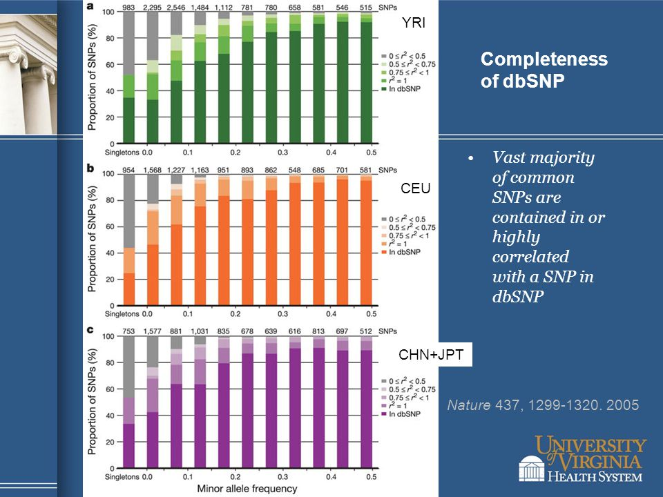 Completeness of dbSNP Vast majority of common SNPs are contained in or highly correlated with a SNP in dbSNP Nature 437, 1299-1320. 2005 YRI CEU CHN+J