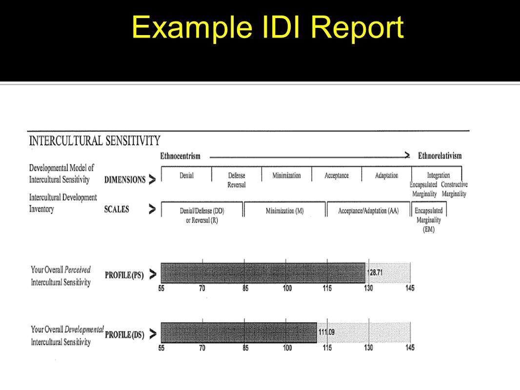 Example IDI Report