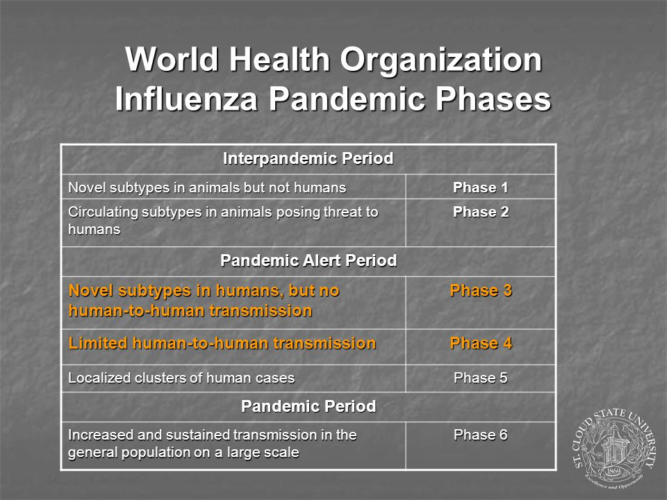Could the H5N1 virus cause the next pandemic.