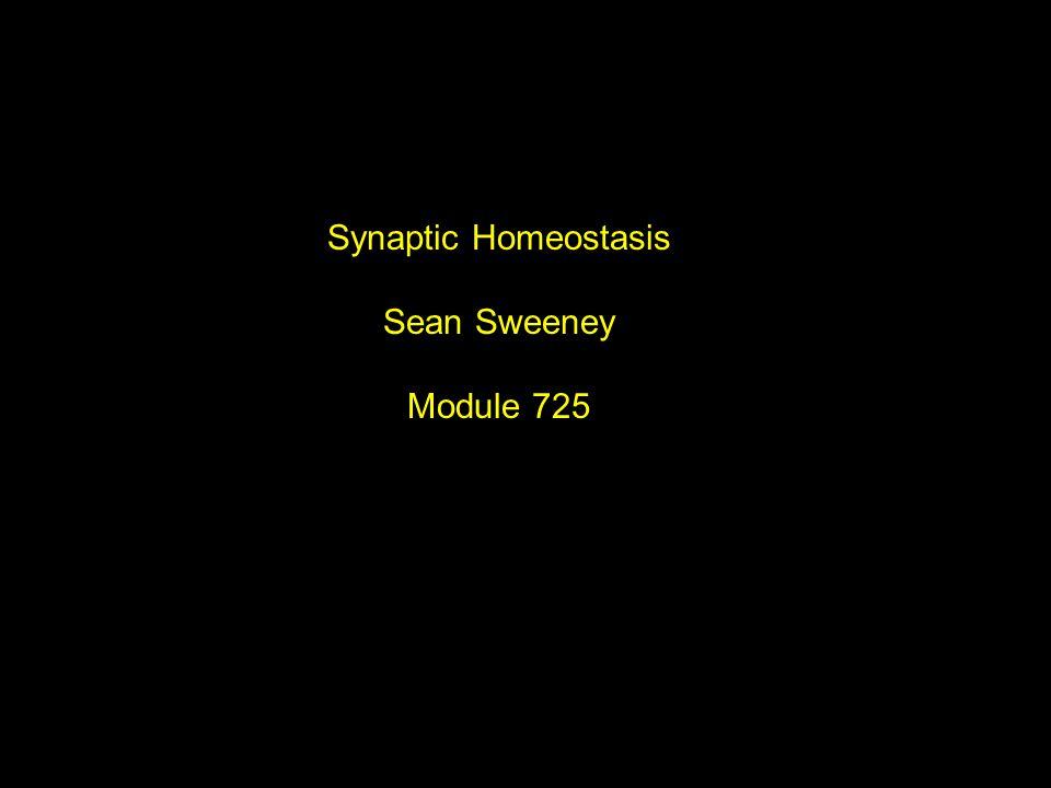 Synaptic Homeostasis Sean Sweeney Module 725